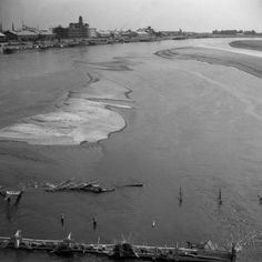 When Dunaj close to dried, Bratislava 1947 Autumn 01 Bratislava, Old Photos, Nostalgia, Beach, Water, Times, Outdoor, Autumn, Old Pictures