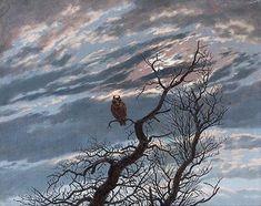 Eule auf schmucklosem Baum