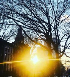 Sunset in Fort Greene! New York City, Brooklyn, Nyc, Photo And Video, Sunset, Landscape, Inspiration, Instagram, Biblical Inspiration