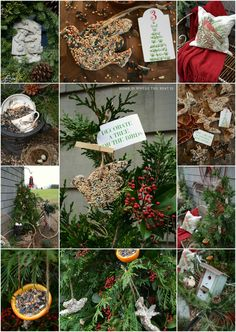 In the midst of the hustle and bustle of the season, I'm taking a little time out forsome advent fun. I decorated a tree for the birds with bird seed treats, an easy and fun project thatkids woul...