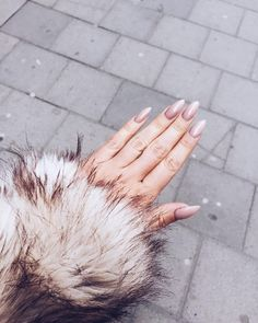 """22.9k Likes, 133 Comments - Angelica Blick (@angelicablick) on Instagram: """"CLAWS // @fridaselkirk ( no, its not a real fur )"""""""
