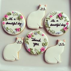 white kitty cookies ★ More on #cats - Get Ozzi Cat Magazine here >> http://OzziCat.com.au ★