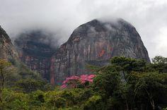Cloud-covered cerros in Amboró National Park, Bolivia