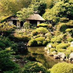 Garden of Tojiin temple. #Kyoto #Japan #travel