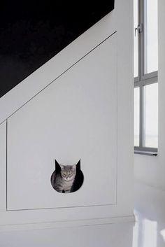 Cat door design