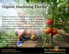 Best Tips For Organic Gardening in Florida, grow easily your own Healthy & Fresh food With Sun State Organics