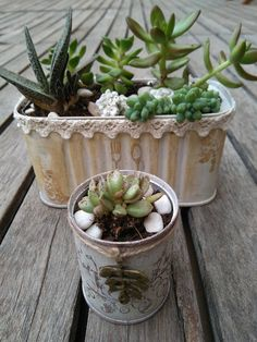 Joanne Archambault shared a video Altered Tins, Vintage Flowers, Home Projects, Gardening Tips, Decoupage, Flower Pots, Cactus, Planter Pots, Recycling