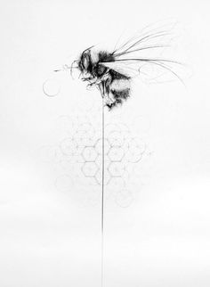 Ideas Of Cool Geometric Tattos Bumble Bee Tattoo, Honey Bee Tattoo, Body Art Tattoos, New Tattoos, Tatoos, Tattoo Art, Bee Drawing, Motif Art Deco, Bee Art
