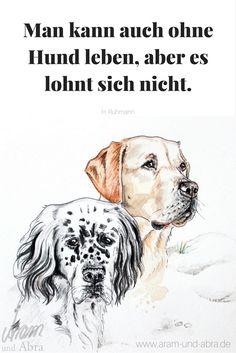 73 Besten Hunde Sprüche Und Zitate Bilder Auf Pinterest Dogs