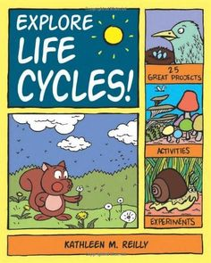 Explore Life Cycles!:  Author: Kathleen M. Reilly