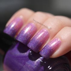 purple and pink gradient