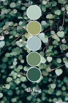 Color Schemes Colour Palettes, Green Colour Palette, Color Combos, Beautiful Color Combinations, World Of Color, Color Stories, Agra, Lush Green, Color Swatches