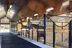 Love this natural-looking barn. Sleek, clean lines, great ventilation, happy horses. Lucas Equine horse stalls.