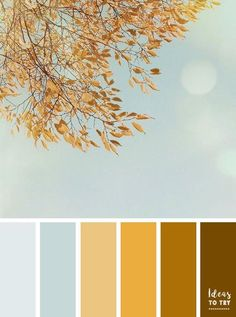 Yellow Autumn leave color scheme,autumn color palette,blue and yellow gold color combo