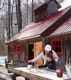 Vue extérieure de la cabane à sucre avec tire sur la neige en avant-plan
