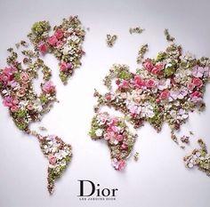 Dior // flower map