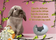 Wielkanoc: Animowane kartki wielkanocne z życzeniami Happy Easter, Origami, Rabbit, Celebrations, Diy, Moving Pictures, Bunny, Do It Yourself, Rabbits
