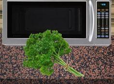 12 tipp a mikróhoz-Amit eddig még nem tudtál Fresco, Cooking Tips, Microwave, Remedies, Good Things, Plants, Food, Yummy Yummy, Herbs