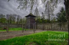 Another great shot of the concentration camps! by Giovanni Chianese