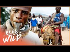 The Mysterious Animal Gangs Of Nigeria Hyena Man, African Diaspora, The Clash, World Cultures, Aesthetic Wallpapers, Mysterious, Documentaries, Mystery, Pets
