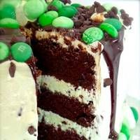 Come find a favorite recipe in this list of over 80 chocolate mint desserts!