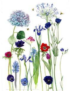 """Saatchi Online Artist: Gill Smith; Watercolor 2010 Painting """"Hydrangea, Agapanthus, Iris, Freesia, Anemones, Hyacinth, Tulip, Pansies, Lisianthus and Bees."""""""