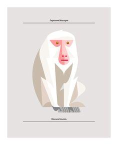 Japanese Macaque Print by Josh Brill  http://www.lumadessa.com/prints/japanese-macaque