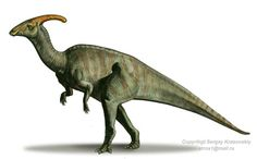 How Much Do You Know About Parasaurolophus?: Parasaurolophus Could Run on its Two Hind Legs