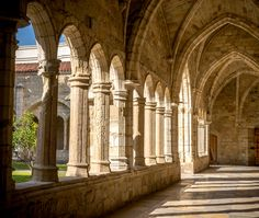 Santander Cathedral, detail of a hallway, columns and arches of the cloister (Cantabria, Spain) Library Architecture, Gothic Architecture, Hogwarts, Slytherin Aesthetic, Harry Potter Aesthetic, Toledo Cathedral, The Cloisters, Gothic Home Decor, Gothic House