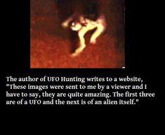 AAAHHHH! Real Alien Photos!!