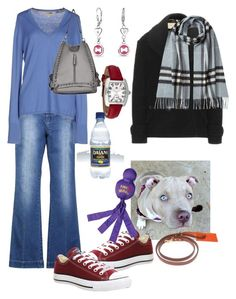 """""""Today It's Just Me & My Dog"""" by naviaux ❤ liked on Polyvore featuring Burberry, Converse, Shinola, Bling Jewelry, Michele, women's clothing, women, female, woman and misses"""