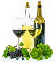 growing seedless grapes in kenya Grape Types, White Wine Grapes, Grape Plant, Growing Grapes, Old Clothes, Office Gifts, White Ceramics, Red And White, Alcoholic Drinks