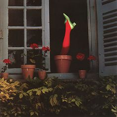 Noticia: El misterio de Guy Bourdin