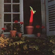 http://www.guybourdin.net/shoes_pages/flowerpt_shoe.html