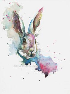 By Sarah Stokes: