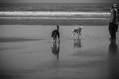 Essaouira, the beach By Strange Jazzy Photographies