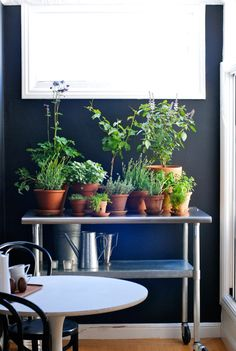 Use a rolling cart to hold a miniature herb garden that can be brought inside or kept outside.