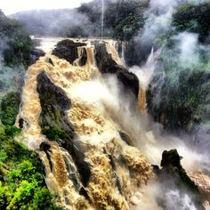 "Why FNQ Rocks: ""Australia's Iguazu"" - the mighty Barron Falls in spate"
