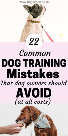 Dog training mistakes that no puppy owner can afford to ignore. 22 reasons why y. - Dog training mistakes that no puppy owner can afford to ignore. 22 reasons why your basic dog train - Puppy Training Classes, Basic Dog Training, Training Your Puppy, Training Pads, Crate Training, Training Videos, Toilet Training, Puppy Leash Training, Training Quotes