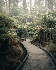 Make Pictures, Editing Pictures, Railroad Tracks, New Zealand, Paths, Bali, Nature Photography, Sidewalk, Spa