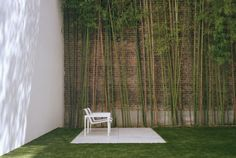 bamboo & brick | Rees Roberts + Partners LLC - City