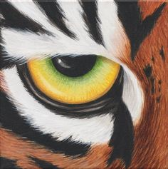 colorful tiger eye painting - Google Search