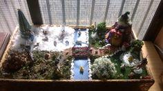 Jardín miniatura Hadas.