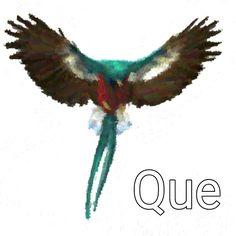 Resplendent Quetzal Brush v2