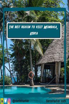 The best reason to visit Mombasa, Kenya - Dante Harker Kenya Travel, Africa Travel, Mombasa Kenya, Visit Maldives, Wildlife Safari, Paragliding, Ultimate Travel, Wanderlust Travel, Travel Inspiration