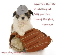 Dog Quotes #Inspirational #TheLovedDog  Linda Bauwin Your CARD-iologist  Helping you create cards from the heart.