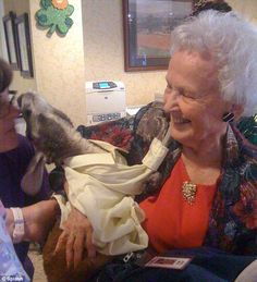 All smiles: This woman meets Irwin, who works as a therapy pet