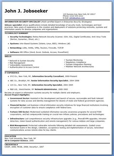 Information Security Specialist Resume Sample