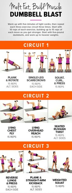 Awesome workout for your weekend to do list!! Incinerate Fat and Build Muscle Wi.... >> Figure out even more by clicking the photo link