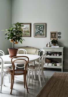 Mismatched brown and white bentwood chairs